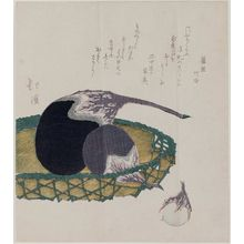 Totoya Hokkei: Eggplants in a Basket - Museum of Fine Arts