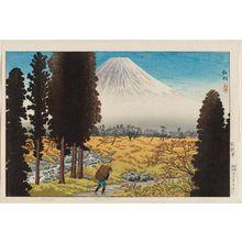 Takahashi Hiroaki: Shisozawa (?) - Museum of Fine Arts