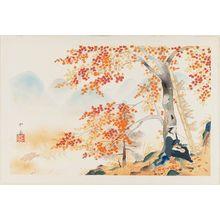 Dômoto Insho: Autumn Maple Leaves at Takao, from the album Eight Views of Kyoto (Kyôto hakkei) - ボストン美術館