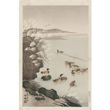 Ohara Koson: Wild Ducks and Pampas Grass - Museum of Fine Arts