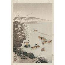Ohara Koson: Wild Ducks and Pampas Grass - Museum of Fine Arts
