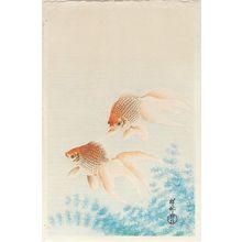 小原古邨: Two Goldfish - ボストン美術館