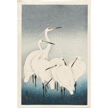 Ohara Koson: Five white herons standing in water; snow falling - Museum of Fine Arts