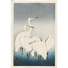 小原古邨: Five white herons standing in water; snow falling - ボストン美術館