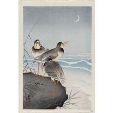 小原古邨: Plovers and Waves - ボストン美術館