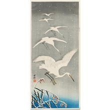Ohara Koson: Five Egrets Descending in Snow - Museum of Fine Arts