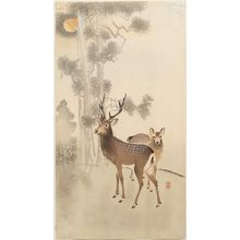 Ohara Koson: Two deer, pine and moon - Museum of Fine Arts