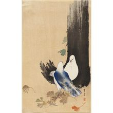 Watanabe Seitei: Two pigeons under a ginko tree - Museum of Fine Arts