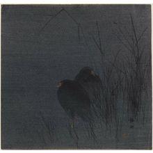 静湖: Two Water-hens among reeds. - ボストン美術館