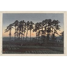 川瀬巴水: Ichinokura at Ikegami, Evening (Ikegami Ichinokura [sekiyo]), from the series Twenty Views of Tokyo (Tôkyô nijûkei) - ボストン美術館