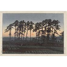 Kawase Hasui: Ichinokura at Ikegami, Evening (Ikegami Ichinokura [sekiyo]), from the series Twenty Views of Tokyo (Tôkyô nijûkei) - Museum of Fine Arts