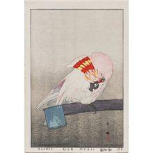吉田博: Kurumazaka Parrot (Kurumazaka ômu), from the series Zoo (Dôbutsuen) - ボストン美術館