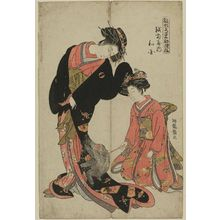 磯田湖龍齋: Wakoku of the Echizenya, from the series Models for Fashion: New Year Designs as Fresh as Young Leaves (Hinagata wakana no hatsu moyô) - ボストン美術館