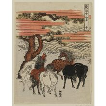 磯田湖龍齋: Horse (Uma), from the series Fashionable Twelve Signs of the Zodiac (Fûryû jûnishi) - ボストン美術館