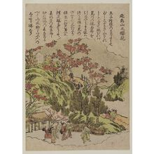 北尾重政: Cherry Blossoms at Asuka Hill (Asukayama no ôka), from an untitled series of famous places in Edo - ボストン美術館
