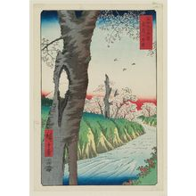 Utagawa Hiroshige: Koganei in Musashi Province (Musashi Koganei), from the series Thirty-six Views of Mount Fuji (Fuji sanjûrokkei) - Museum of Fine Arts