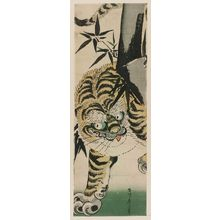 Kikugawa Eizan: Tiger and Bamboo - Museum of Fine Arts