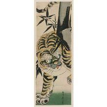 Kikugawa Eizan: Tiger and Bamboo - Museum of Fine Arts