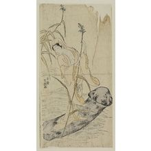 Ippitsusai Buncho: Female Daruma Riding a Mushroom - Museum of Fine Arts