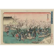 Utagawa Hiroshige: Plum Garden at Kameido (Kameido ume yashiki no zu), from the series Famous Places in the Eastern Capital (Tôto meisho) - Museum of Fine Arts
