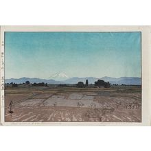 Yoshida Hiroshi: Fujiyama from Musashino (Musashino), from the series Ten Views of Mount Fuji (Fuji jukkei) - Museum of Fine Arts