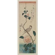 Utagawa Hiroshige: Finch on Camelia Branch - Museum of Fine Arts