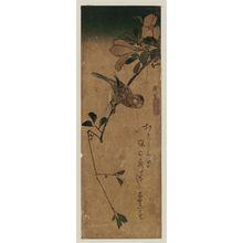 Utagawa Hiroshige: Finch on Magnolia Branch - Museum of Fine Arts