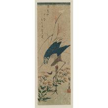 Utagawa Hiroshige: Crane and Autumn Grasses - Museum of Fine Arts