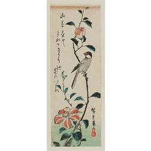 Utagawa Hiroshige: Finch on Camellia Branch - Museum of Fine Arts