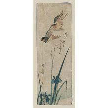 Utagawa Hiroshige: Flying Swallows and Iris - Museum of Fine Arts