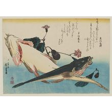 Utagawa Hiroshige: Flatheads and Eggplant, from an untitled series known as Large Fish - Museum of Fine Arts