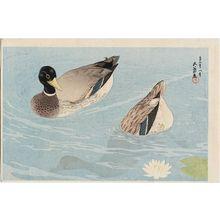 橋口五葉: Two Ducks - ボストン美術館