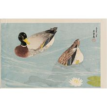 Hashiguchi Goyo: Two Ducks - Museum of Fine Arts