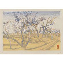 Maekawa Senpan: Plum orchard. - Museum of Fine Arts
