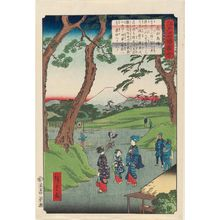 Utagawa Hiroshige II: Takadanobaba, from the series Views of Famous Places in Edo (Edo meishô zue) - Museum of Fine Arts