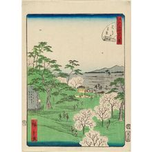 二歌川広重: No. 13, Cherry-blossom Viewing at Asuka Hill (Asukayama hanami), from the series Forty-Eight Famous Views of Edo (Edo meisho yonjûhakkei) - ボストン美術館