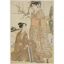 Katsukawa Shun'ei: Actor Segawa Kikunojo III and Iwai Hanshiro IV - Museum of Fine Arts