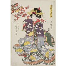 Kitagawa Utamaro: Muro no ume, tsubomi no hana - flowers and buds of the plum tree. Series: Tenkatsu Bijin Ikebana Awase - Series of flower arrangements by beauties. - Museum of Fine Arts
