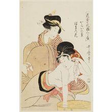 Kitagawa Utamaro: A Chrysanthemum of the Enclosed Quarter and a Waterweed Flower (Kakoi no kiku, ukigusa no hana), from the series Matching Flowers and Comparing Makeup (Hana awase keshô kurabe) - Museum of Fine Arts