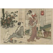 喜多川歌麿: Bon Lanterns and Potted-plant Vendor, from Vol. 2 of the book Ehon shiki no hana (Flowers of the Four Seasons) - ボストン美術館