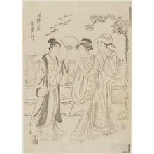 細田栄之: Geese at Mukôjima (Mukôjima kari yuki?), from the series Eight Views of Edo (Edo hakkei) - ボストン美術館