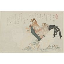 Kubo Shunman: Chickens, from the series A Set of Five Prints (Goban no uchi) - Museum of Fine Arts