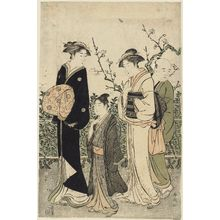 Katsukawa Shuncho: Viewing Plum Blossoms - Museum of Fine Arts