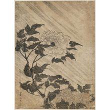 Kitao Masayoshi: Peonies in Rain - Museum of Fine Arts