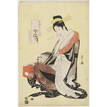 Hosoda Eishi: Morokoshi of the Echizenya, from the series Beauties of the Yoshiwara as Six Floral Immortals (Seirô bijin Rokkasen) - Museum of Fine Arts