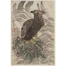 Utagawa Toyokuni I: Sea Eagle - Museum of Fine Arts