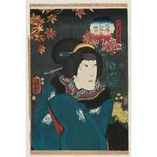 Utagawa Kunisada II: Actor Onoe Baikô IV (Onoe Kikugorô IV) as Daikaku's Wife Hinaginu, from the series The Book of the Eight Dog Heroes (Hakkenden inu no sôshi no uchi) - Museum of Fine Arts