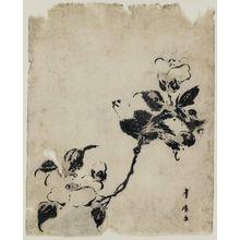Utagawa Toyohiro: Bird on Camellia Branch - Museum of Fine Arts