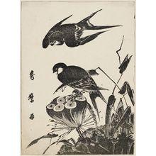 喜多川秀麿: Swallows and Lotus Pod - ボストン美術館