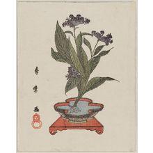 Kitagawa Hidemaro: Flower Arrangement - Museum of Fine Arts